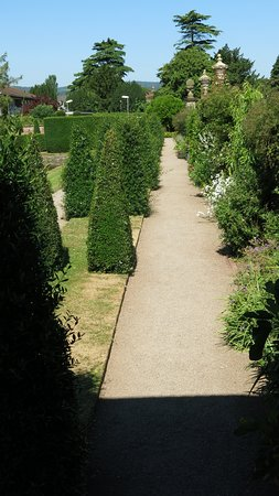 Westbury Court Gardens: Beautiful hedges.