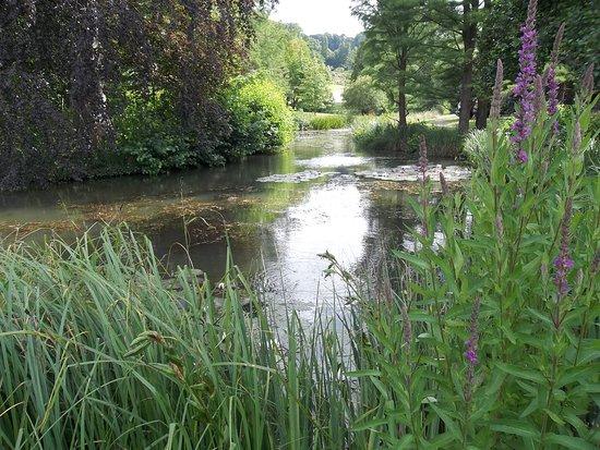Jardin Botanique Jean-Marie Pelt: plan d'eau