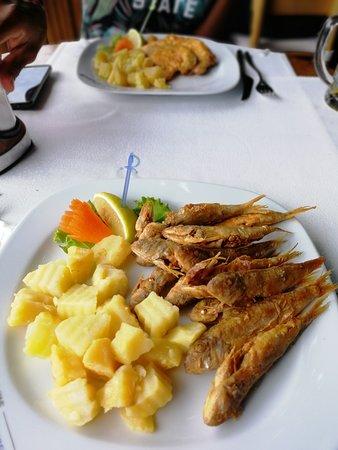 Plakamoto: Salmonetes fritos y tiburón rebozado