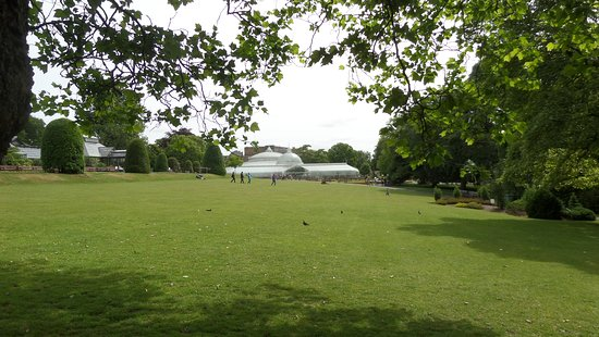 Glasgow Botanic Gardens: Grounds and green house