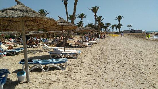 Bilde fra SENTIDO Palm Azur