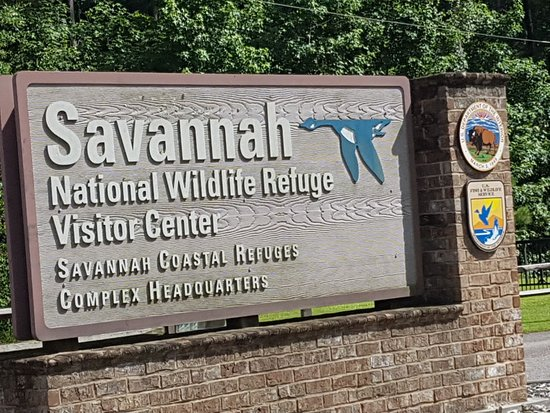 Savannah National Wildlife Refuge: IMG-20180630-WA0009_large.jpg