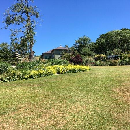 Bilde fra RHS Garden Harlow Carr