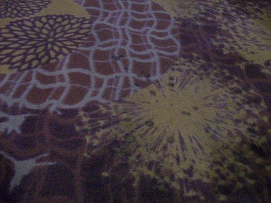Hampton Inn Anderson: Dirty Hallway Carpeting