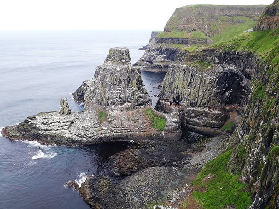RSPB Rathlin West Light Seabird Centre: The cliff nest to the lighthouse where you can see the puffins.