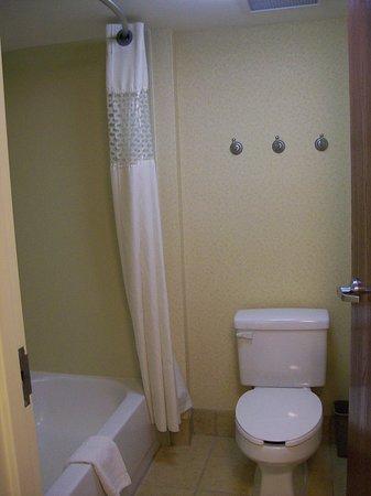 Hampton Inn & Suites Savannah - I-95 S - Gateway: Toilet and Shower in Bathroom