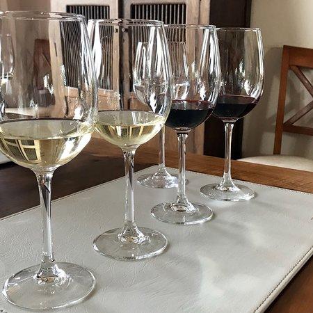 Emiliana Organic Vineyards: photo3.jpg