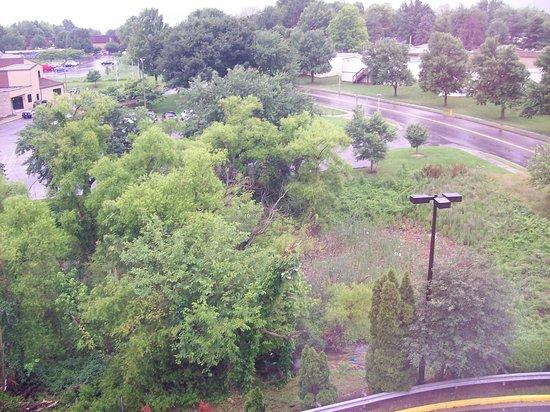Hampton Inn & Suites Frederick-Fort Detrick: Room 526 View