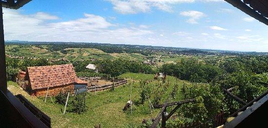 Sveti Ivan Zelina, Κροατία: PANO_20180701_134800_large.jpg