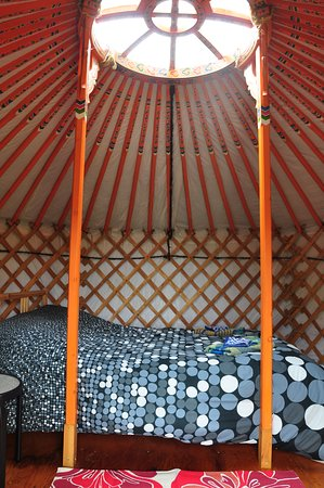 Cabot Shores Wilderness Resort and Retreat: Little Orange Yurt