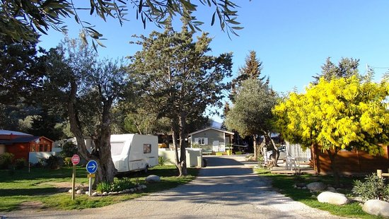 camping les oliviers le boulou france campground reviews photos tripadvisor. Black Bedroom Furniture Sets. Home Design Ideas