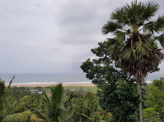 The Travancore Heritage Beach Resort: View from room.