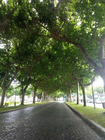Vila Verde, Portugal: Rua da praça em dia de chuva