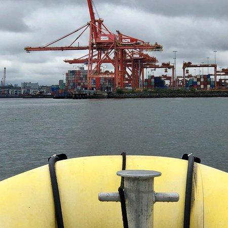 Bilde fra Sea Vancouver