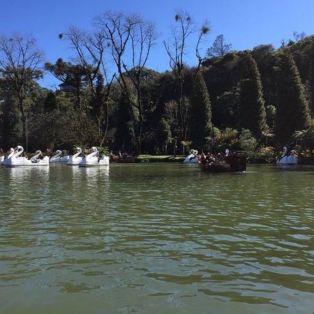 Фотография Lago Negro