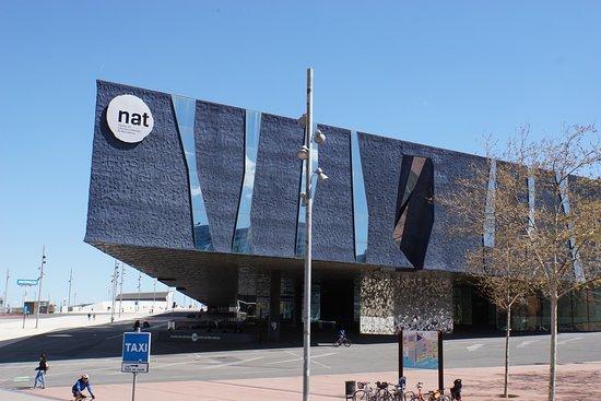 Museu de Ciencies Naturals de Barcelona: Музей