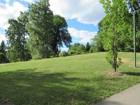 Botanical Gardens (Botanisk Hage og Museum): Prato