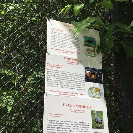 Novosibirsk Zoo: photo2.jpg