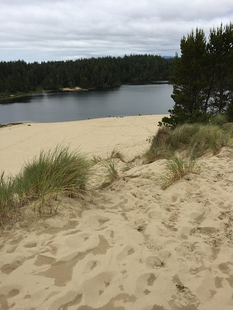 Shore Acres State Park: Sand dunes for climbing
