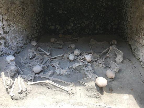 Parco Acheologico di Ercolano: Herculaneum skeletons