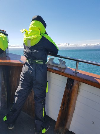 Original Whale Watching Tour on board a Traditional Oak Ship from Husavik: My 16 year old really enjoyed watching for the whales! We saw minkes, harbor porpoises, humpback