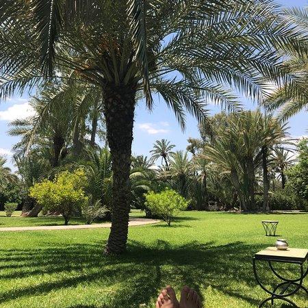 Palmeraie, Morocco: photo2.jpg