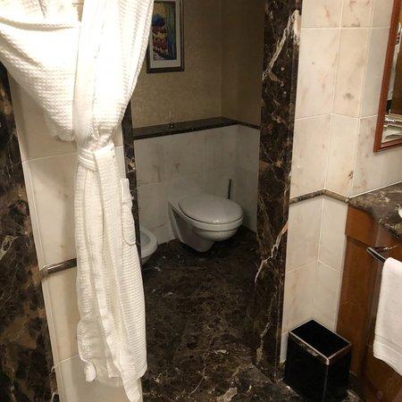丽思卡尔顿酒店集团照片
