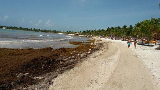 Barcelo Maya Caribe – fénykép