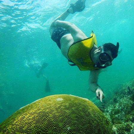 坎昆珊瑚礁和沉船浮潜之旅照片