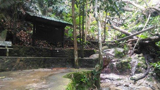 Soga Perdana Amenity Forest照片