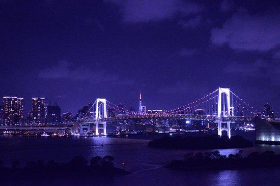 东京台场希尔顿酒店照片
