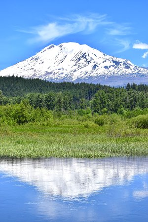 Mount Adams at Trout Lake WA.