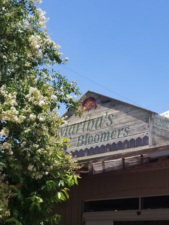 Navasota, TX: Front of Store