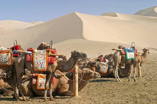3-Day Private Dunhuang Tour: Mogao...