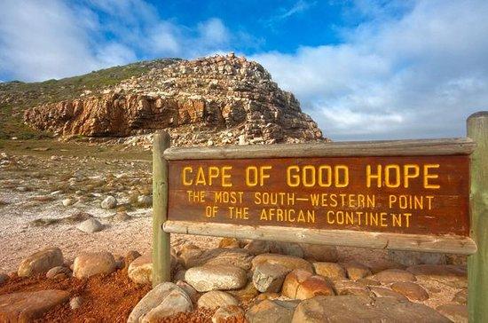 Cape Town: excursion matinale dans la...