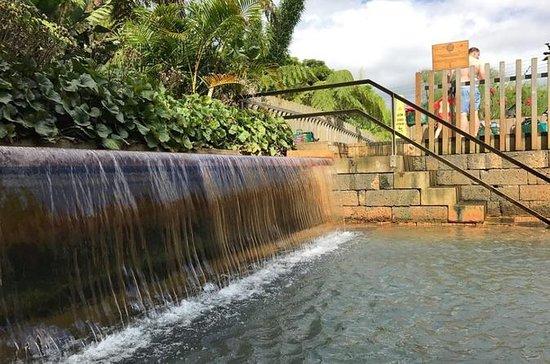 Açores - Furnas à Nitgh avec dîner et piscine thermale inclus