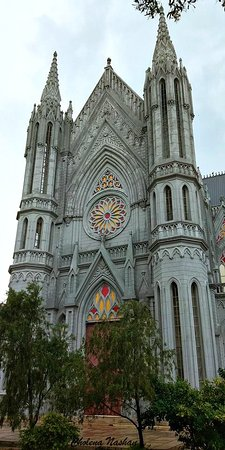 St. Philomena's Church: St. Philomena's Cathedral