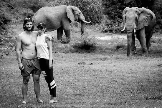 Tiger Safaris: Our visits from the elephants at the swimming pool make a memorable stay.