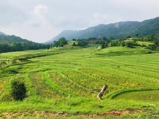 Green Land Trekking Kalaw: paisaje