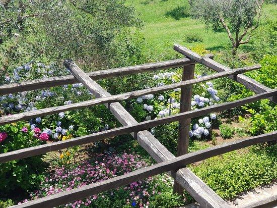Galatro, Италия: 20180701_130324_large.jpg