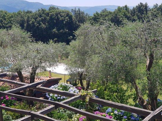 Galatro, إيطاليا: 20180701_130321_large.jpg