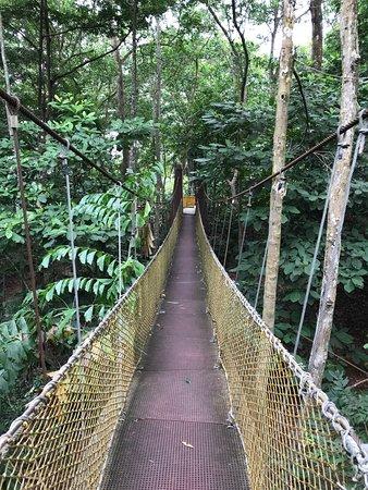Gunung Lambak: the rope bridge for visitors