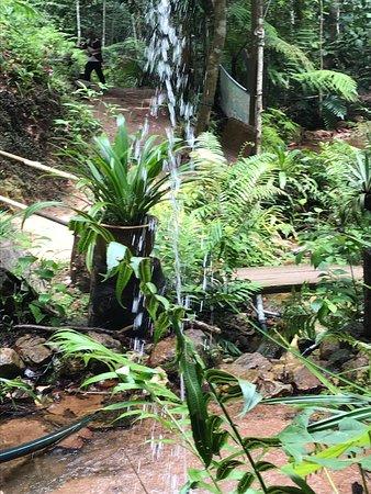 Gunung Lambak: fountains and waterfalls along the jungle trail