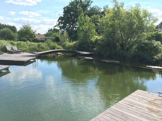 Marienfeld, Germany: Schwimmteich