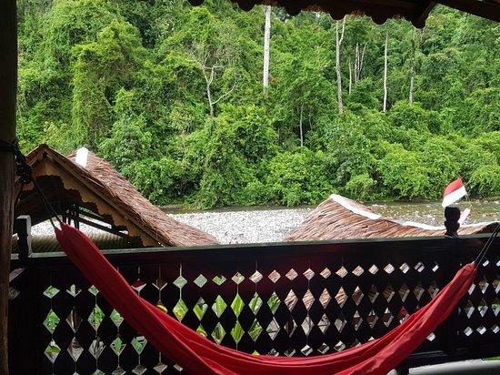 Foto de EcoTravel Cottages Bukit Lawang
