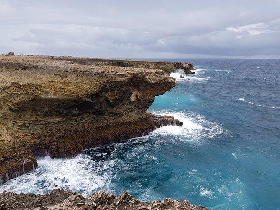 Bonaire National Marine Park: 20180629_123152_large.jpg