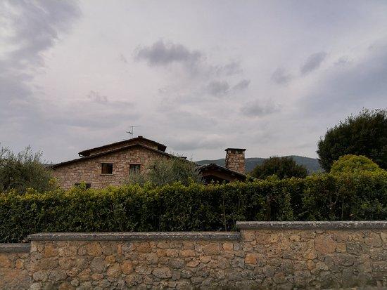 ItalyXP照片
