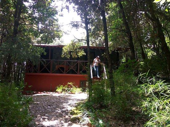 Fotografia de Jungle Lore Birding Lodge