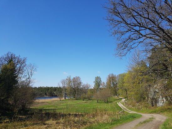 Varmdo, Sverige: I Björnö naturreservat, på väg ut på Näset.