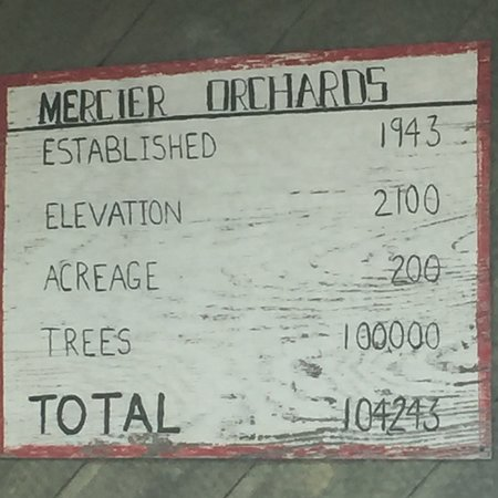 Mercier Orchards: photo5.jpg